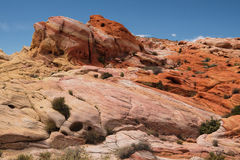 Colorful Valley of Fire Royalty Free Stock Image