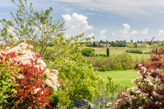 Colorful Valley of Tuscany. A green Tuscany valley with colorful plants in foreground Royalty Free Stock Photo