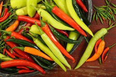 colorful varieties of chili peppers Stock Image