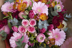 Colorful variety of flowers Royalty Free Stock Photography