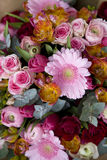 Colorful variety of flowers Royalty Free Stock Photo