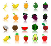 Colorful variety fruit icon. With many fruit Stock Image