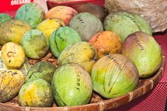 Colorful variety of mangoes displayed. On a wood bushel top for sale at a tropical farmers market Stock Photos