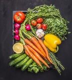 Colorful various of organic farm vegetables with fresh carrots with cherry tomatoes, garlic, lemon radish, peppers, cucumbers on w Royalty Free Stock Images