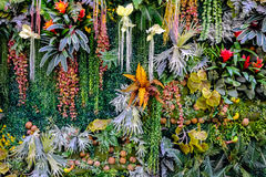 Colorful various of plastic plants wall. Background royalty free stock photos