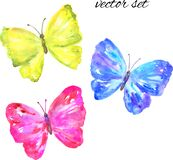 Colorful vector butterflies: yellow, pink, blue. Hand drawn watercolor illustration. Isolated on white background.