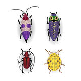 Colorful vector drawing of small beetles. Insect isolated on the white background. Cartoon insect bug icon Stock Image