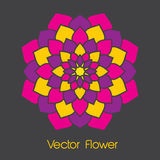 Colorful Vector Flower Royalty Free Stock Photos
