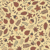 Colorful vector hand drawn pattern with autumn elements: foliage, berries and acorns Royalty Free Stock Photography