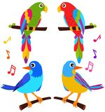 A colorful vector Icons : Parrots and Birds Stock Photo