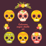 Colorful vector set of skulls. Stock Images