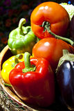 Colorful vegetable. A group of colorful vegetable Stock Images