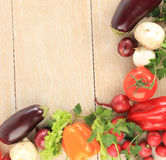 Colorful Vegetable Frame Stock Images