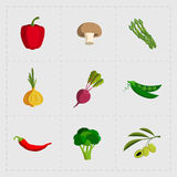 Colorful Vegetable Icon Set on White Background Stock Photography