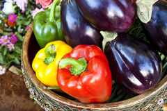 Colorful vegetables. A group of colorful vegetables Stock Photography