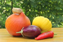 Colorful vegetables Stock Images