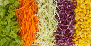 Colorful Vegetables. Colorful mixed vegetables on background Stock Images