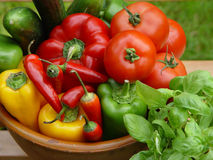 Colorful vegetables. Paprika&tomato Stock Photography
