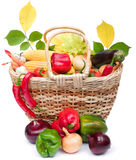 Colorful vegetables in basket Stock Images