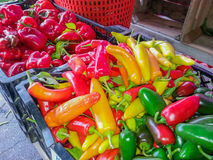 Colorful Vegetables at Farmer's Market Royalty Free Stock Photos