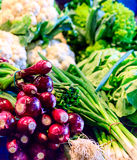 Colorful vegetables at the market Royalty Free Stock Photo