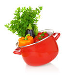 Colorful vegetables in a red cooking pot Royalty Free Stock Photo