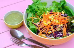 Colorful of vegetables salad Stock Image