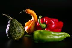 Colorful vegetables still over black Stock Image