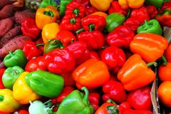 Colorful Vegtabales Stock Images