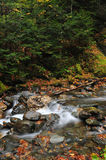Colorful Vermont Brook in the fall Royalty Free Stock Images