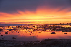 Colorful and very bright sunset on the sea at low tide. The sky is yellow, pink, blue and purple colors of the sea during sunset at low tide Stock Photography