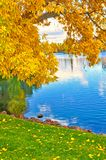 Colorful and Vibrant Fall Leaves and Trees with Lake. Beautiful yellow autumn leave are caught by green grass off of a vibrant blue lake Stock Photo