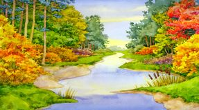 Autumn Forest Brook royalty free illustration