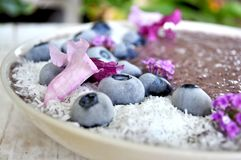 A colorful and vibrant purple smoothie bowl. Beautiful, healthy, and vibrant living food smoothie bowl has an array of colors and textures and a taste that will Stock Image