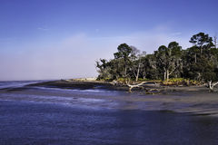 Colorful view of Driftwood Beach, Jekyll Island, G Royalty Free Stock Images