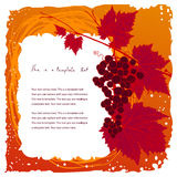 Colorful vintage frame with grape cluster. Doodle vintage frame with grape cluster on a leafy branch and copyspace for your text Stock Photo