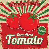 Colorful vintage Tomato label Stock Photography