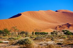 Shifting sand dune in Sossusvlei national park, Namibia