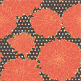 Colorful warm orange seamless floral aster pattern with dots Royalty Free Stock Image