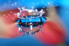 Colorful Water drop crown splashing in water stock photography