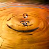 Colorful water drop. Splash in water macrophotography Stock Photo