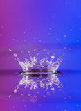 Colorful Water Splash Royalty Free Stock Images