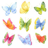 Colorful watercolor butterflies stock illustration