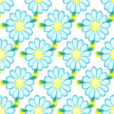 Colorful watercolor daisies  on white background. Stock Photos