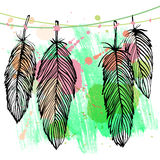 Colorful watercolor feather set Stock Photos