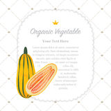 Colorful watercolor texture nature organic fruit memo frame. Colorful watercolor texture nature organic fruit memo frame delicata squash Royalty Free Stock Image