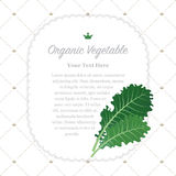 Colorful watercolor texture nature organic fruit memo frame. A Colorful watercolor texture nature organic fruit memo frame kale Royalty Free Stock Photo