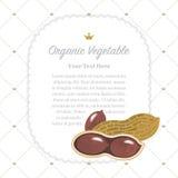 Colorful watercolor texture nature organic fruit memo frame peanut stock illustration