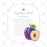 A Colorful watercolor texture nature organic fruit memo frame plum. Colorful watercolor texture nature organic fruit memo frame plum royalty free illustration