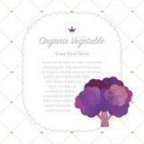 Colorful watercolor texture nature organic fruit memo frame purple broccoli vector illustration